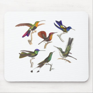 Six Colorful Hummingbirds Mouse Pad