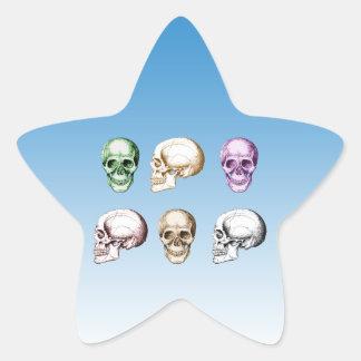 Six Human Skulls multicolored Star Sticker