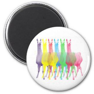 six lamas in six llama colors 2 inch round magnet