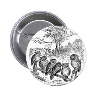 Six Little Owls Sitting on a Broken Down Fence Pinback Buttons