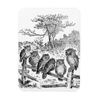 Six Little Owls Sitting on a Broken Down Fence Magnet