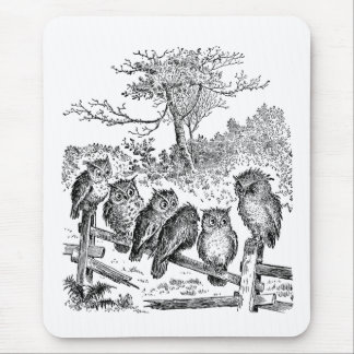 Six Little Owls Sitting on a Broken Down Fence Mouse Pad