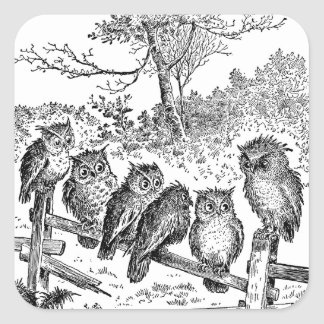 Six Little Owls Sitting on a Broken Down Fence Square Sticker