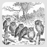 Six Little Owls Sitting on a Broken Down Fence Square Stickers