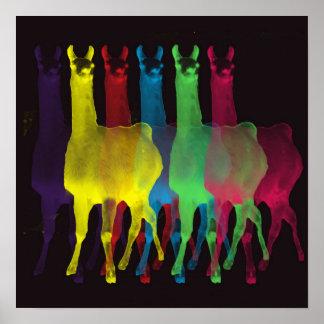 six llamas in six colors posters