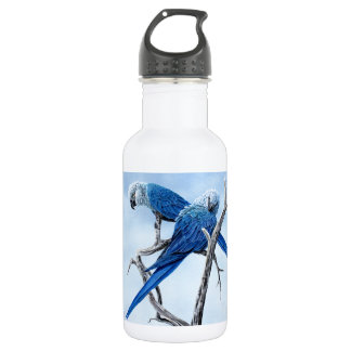 Six Macaw for the Parrot lover 18oz Water Bottle