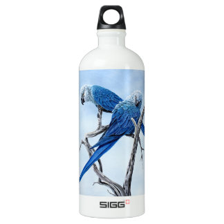 Six Macaw for the Parrot lover SIGG Traveler 1.0L Water Bottle