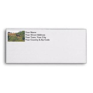 Six Point Elk Photo Envelope