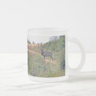 Six Point Elk Photo Frosted Glass Coffee Mug