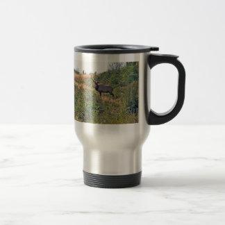 Six Point Elk Photo Travel Mug