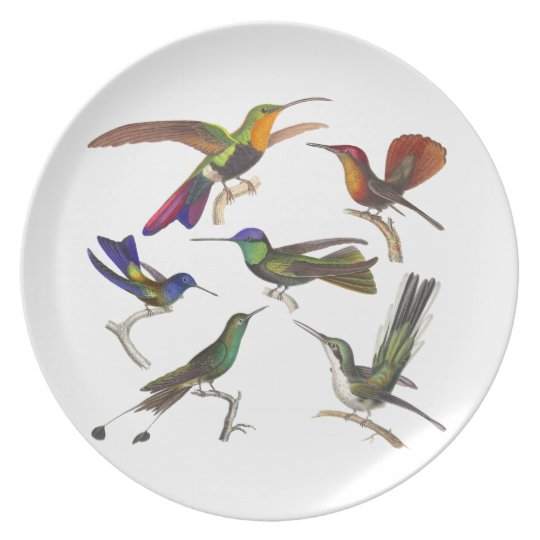 Six Pretty Hummingbirds Bird Lover's Plates
