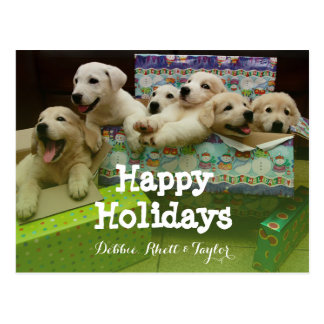 Six puppies sit in Christmas boxes Postcard