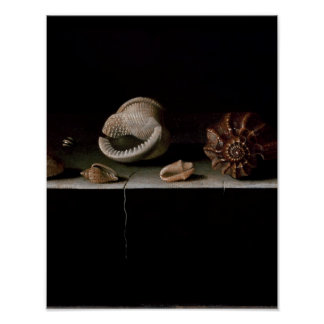 Six Shells on a Stone Shelf, 1696 Poster