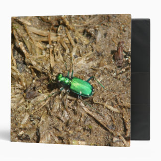 Six-spotted Tiger Beetle, Three Ring Binder. 3 Ring Binder