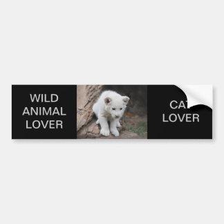 Six week old white baby lion cub bumper sticker