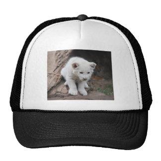 Six week old white baby lion cub trucker hat