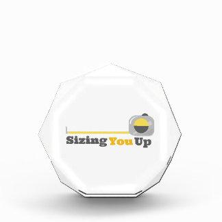 Sizing You Up Awards