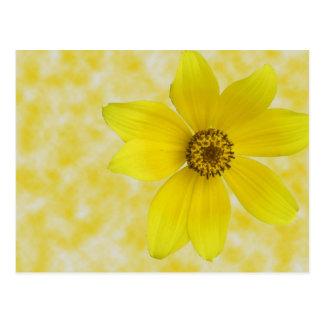 Sizzling Sunrise (Yellow Background) Postcard