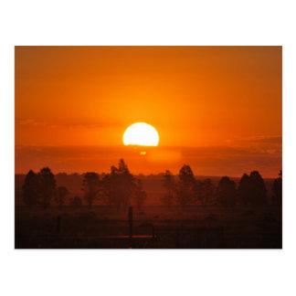 Sizzling sunset postcard