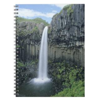 Skaftafell National Park, Svartifoss waterfall, Notebook