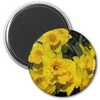 skagit valley 3 2 inch round magnet