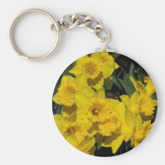 skagit valley 3 basic round button keychain