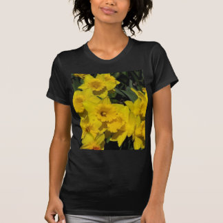 skagit valley 3 T-Shirt