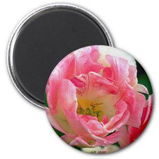 Skagit Valley Tulip 2 Inch Round Magnet