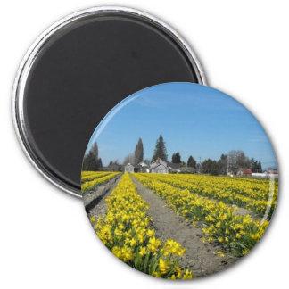 skagit valley tulips 2 2 inch round magnet