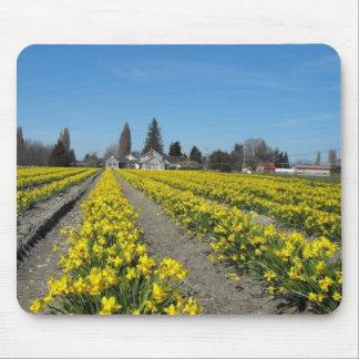 skagit valley tulips 2 mouse mats