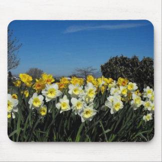 skagit valley tulips 6 mouse mats