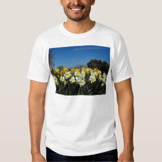 skagit valley tulips 6 t-shirt