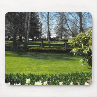 skagit valley tulips mouse pads
