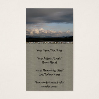 Skagit Valley View Business Card