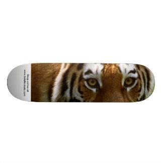 Skate board eye of the tiger