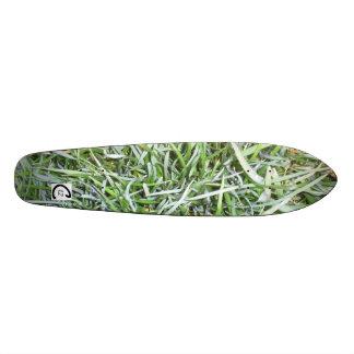 Skate Board Grass