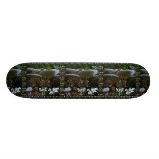 "Skate Borarding Deck Type: 7¾"" MUSHROOM Bud Skateboards"