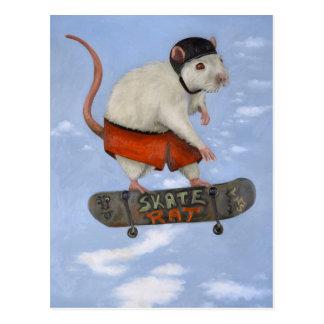 Skate Rat Postcard