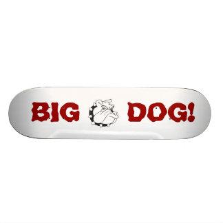 Skateboard: BIG DOG Skateboard. Skateboard Deck