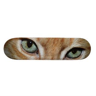 Skateboard Collection - Cat Eyes Skateboard
