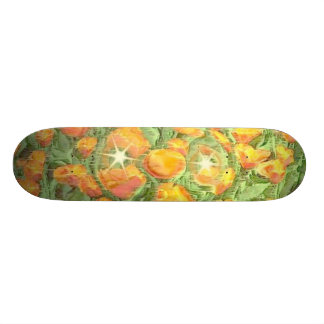 Skateboard Deck Design: Field Research