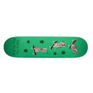 "skateboard_final 5 patineta 7 3/8"""