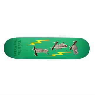 skateboard_final 6_edited-1 tablas de patinar