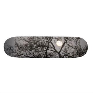 Skateboard, Full Moon, Winter Tree, Gray Sky Skateboard Deck
