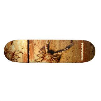 Skateboard Scorpion