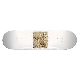 Skateboard with Scorpion