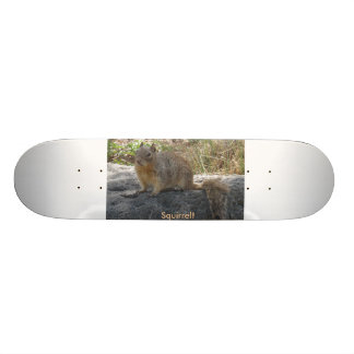 Skateboard with Squirrel