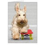 Skateboarding Scottish Terrier Greeting Card