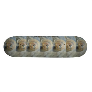 Skateboards made with photography 26