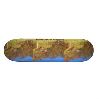 Skateboards made with photography 3